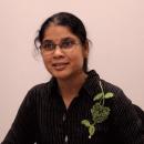 Mrs. Rachna Manoj Maheshwari